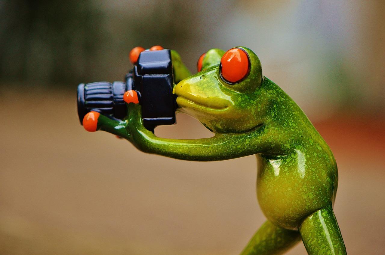 著作権に注意。トラブルを防ぐためにも、画像の取り扱いには注意しよう。